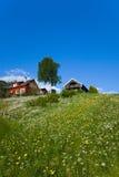 Casas en la colina de la hierba fotos de archivo
