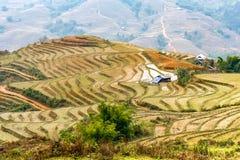 Casas entre la cultura del arroz en las montañas de Sapa Imágenes de archivo libres de regalías