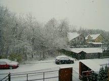 Casas, floresta, nevadas fortes Flocos de neve Foto de Stock