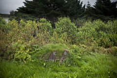 Casas islandêsas pequenas Imagem de Stock Royalty Free