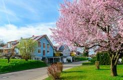Casas modernas na mola fotos de stock royalty free