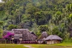 Casas nativas em Amazónia Equador imagem de stock