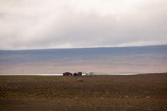 Casas no deserto Fotografia de Stock