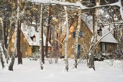 Casas no inverno imagens de stock