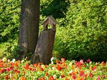Casas novas de um pássaro no parque próximo pela cama de flor Foto de Stock