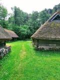 Casas pequenas, grama e floresta imagem de stock