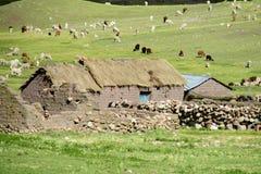 Casas peruanas tradicionales de la piedra del pueblo Imágenes de archivo libres de regalías