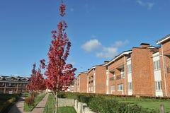 casas residenciais do tijolo do bloco do País-andar Imagens de Stock