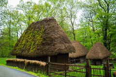 Casas romenas tradicionais, museu da vila de Astra Ethnographic, Sibiu, Romênia Foto de Stock Royalty Free
