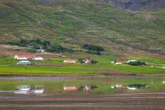 Casas típicas de la granja en la costa islandesa del fiordo Imagen de archivo libre de regalías