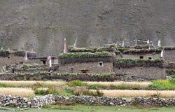 Casas tibetanas tradicionais em Dolpo, Nepal, Himalayas Imagem de Stock