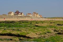 Casas tradicionais no dique da costa de Mar do Norte em Audresselles, França, com praia e a costa musgoso da rocha na parte diant imagem de stock royalty free
