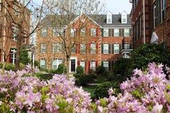 Casas urbanas modernas en la primavera Fotos de archivo libres de regalías