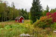 Casas vermelhas de madeira da casa de campo na Suécia Fotografia de Stock