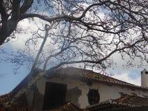 Casas viejas de la isla de Madeira Imagen de archivo