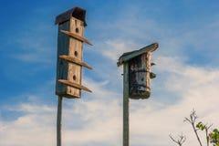 Casas viejas del pájaro Fotografía de archivo