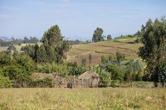 Casas y granjas, Etiopía Foto de archivo libre de regalías