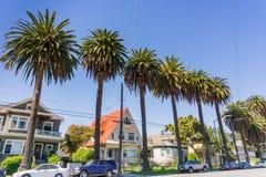 Casas y palmeras viejas en una calle en San Jose céntrico, California Fotos de archivo libres de regalías