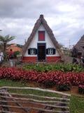 CasastÃpicasmadeirenses/typiska halmtäckte hus i madeira Arkivfoto