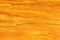 Casca amarela Imagem de Stock