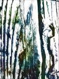 Casca boêmia ilustração royalty free
