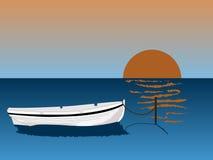 Casca branca Imagem de Stock Royalty Free