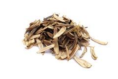 Casca da semente de girassol isolada no fundo branco foto de stock royalty free