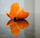 Casca da tangerina Imagem de Stock