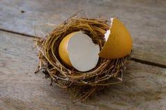 Casca de ovo dispersada em um painel de madeira velho para easter Foto de Stock