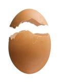 Casca de ovo isolada no fundo branco Imagens de Stock