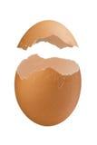 Casca de ovo isolada no fundo branco Fotos de Stock Royalty Free