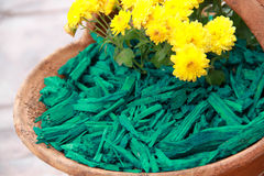Casca decorativa verde da palha de canteiro Fotos de Stock Royalty Free