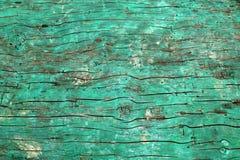 Casca do fim ciano da superfície áspera da árvore acima fotografia de stock