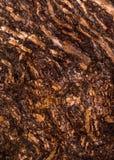 Casca enrugada rubi Fotografia de Stock