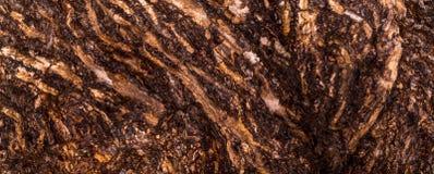 Casca enrugada rubi Imagem de Stock Royalty Free