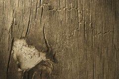 Casca envelhecida Fotografia de Stock Royalty Free