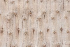 A casca listrada O uso como a variedade de madeira modelada fundo, varia Fotos de Stock