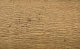A casca listrada O uso como a variedade de madeira modelada fundo, varia Fotos de Stock Royalty Free