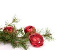 Cascabeles de la Navidad con una rama del pino Foto de archivo libre de regalías