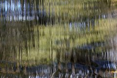 Cascada Imagen de archivo libre de regalías