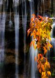 Cascada Foto de archivo libre de regalías