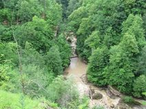 Cascada, agua fangosa, río de la montaña, bosque imagenes de archivo