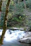 Cascada ahumada de la montaña Fotos de archivo libres de regalías