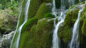 Cascada Bigar, Rumania 3 almacen de metraje de vídeo