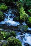 Cascada cerca del lago Ángeles en parque nacional olímpico Fotografía de archivo
