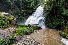 Cascada Chiang Mai, Tailandia de Pha Dokseaw Imagen de archivo libre de regalías