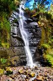 Cascada colorida Fotos de archivo