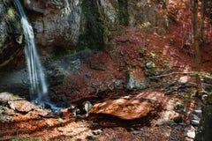Cascada colorida Imagen de archivo
