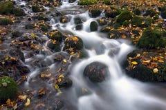Cascada con las hojas de otoño tomadas expososure largo Fotos de archivo libres de regalías
