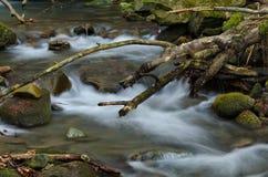 Cascada con las rocas Imagen de archivo libre de regalías